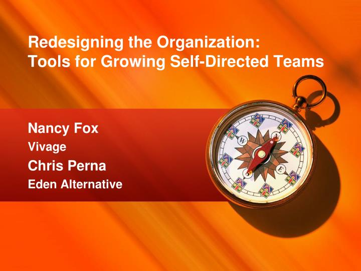 redesigning the organization tools for growing self directed teams n.