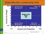 blake moulton leadership grid