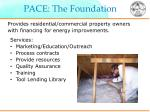 pace the foundation