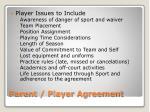 parent player agreement