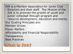 what is jva