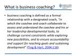 what is business coaching