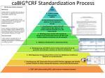 cabig crf standardization process
