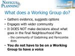 what does a working group do