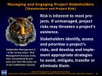 managing and engaging project stakeholders stakeholders and project risk