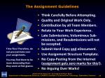 the assignment guidelines