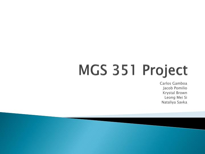 mgs 351 project n.
