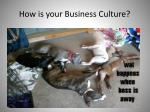 how is your business c ulture