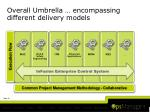 overall umbrella encompassing different delivery models