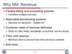 why nm revenue