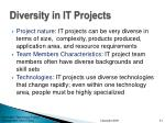 diversity in it projects