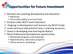 opportunities for future investment