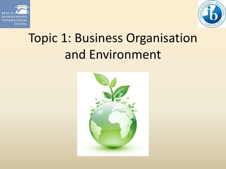 topic 1 business organisation and environment n.