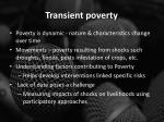 transient poverty