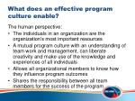 what does an effective program culture enable1