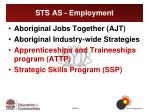 sts as employment