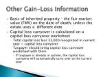 other gain loss information1