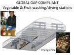 global gap compliant vegetable fruit washing drying stations