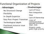 functional organization of projects
