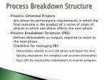 process breakdown structure