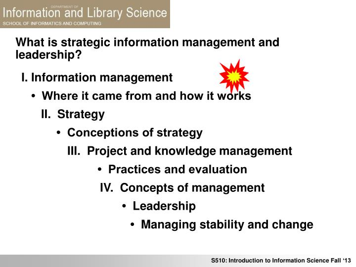 what is strategic information management and leadership n.