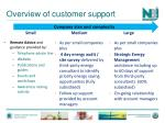 overview of customer support