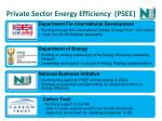 private sector energy efficiency psee