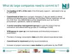 what do large companies need to commit to
