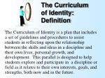 the curriculum of identity definition1