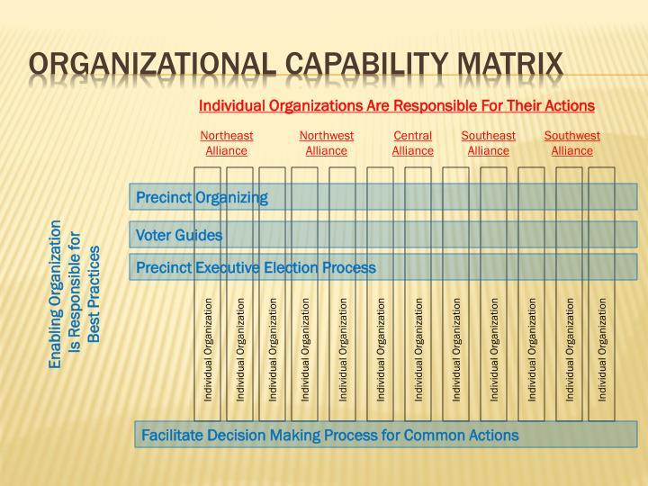 Organizational capability matrix