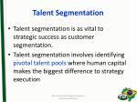 talent segmentation
