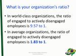 what is your organization s ratio