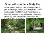 observations of your study site