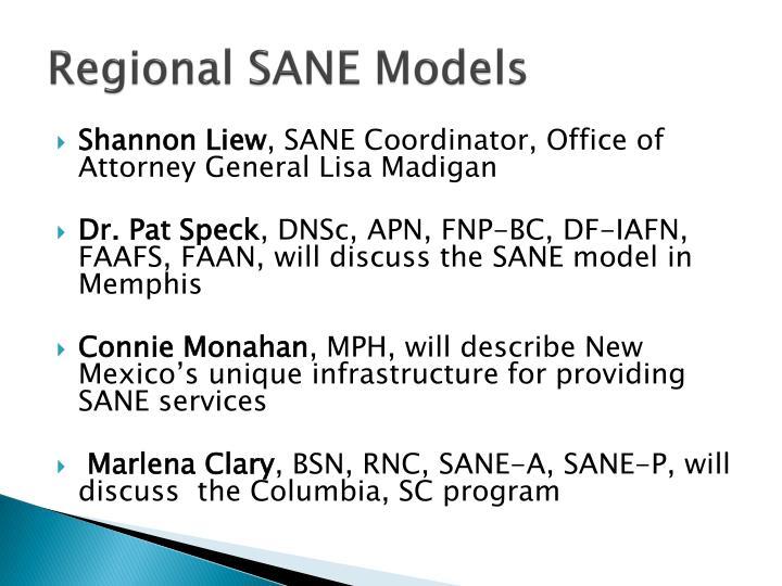 Regional SANE Models