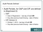 audit periods defined