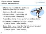 organizational adoption roles responsibilities