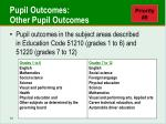 pupil outcomes other pupil outcomes