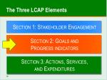 the three lcap elements1