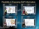 flexibility in exposing sap information
