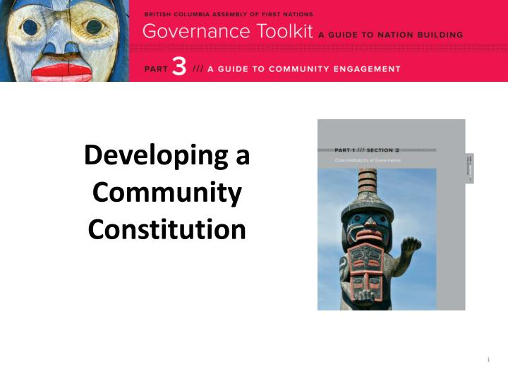 developing a community constitution n.