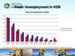 youth unemployment in kzn1