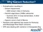 why nutrient reduction