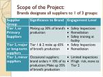 scope of the project brands designate all suppliers to 1 of 3 groups