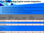 understanding capital market integration