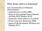 what drives reform in indonesia