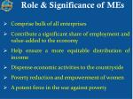 role significance of mes