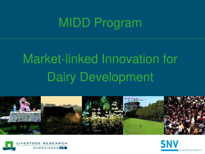 Midd program market linked innovation for dairy development