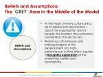 beliefs and assumptions the grey area in the middle of the model