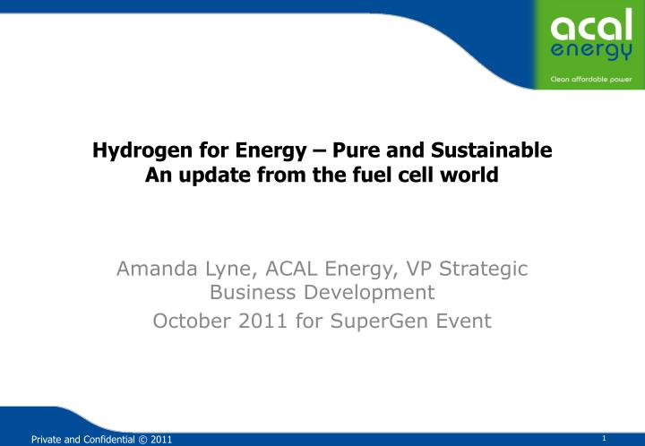 hydrogen for energy pure and sustainable an update from the fuel cell world n.