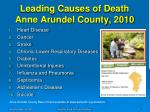 leading causes of death anne arundel county 2010